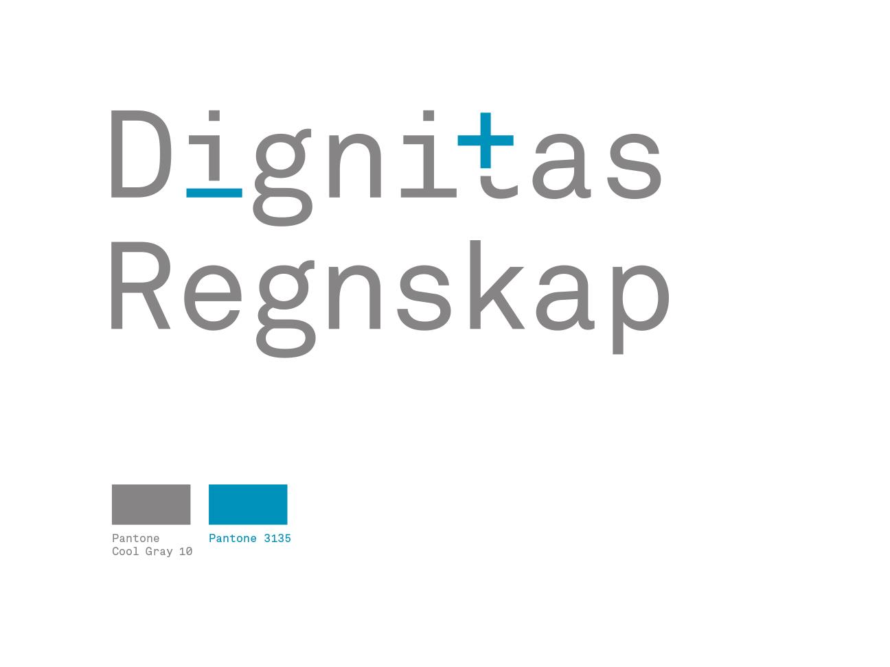 Dignitas Regnskap logo og fargepalett