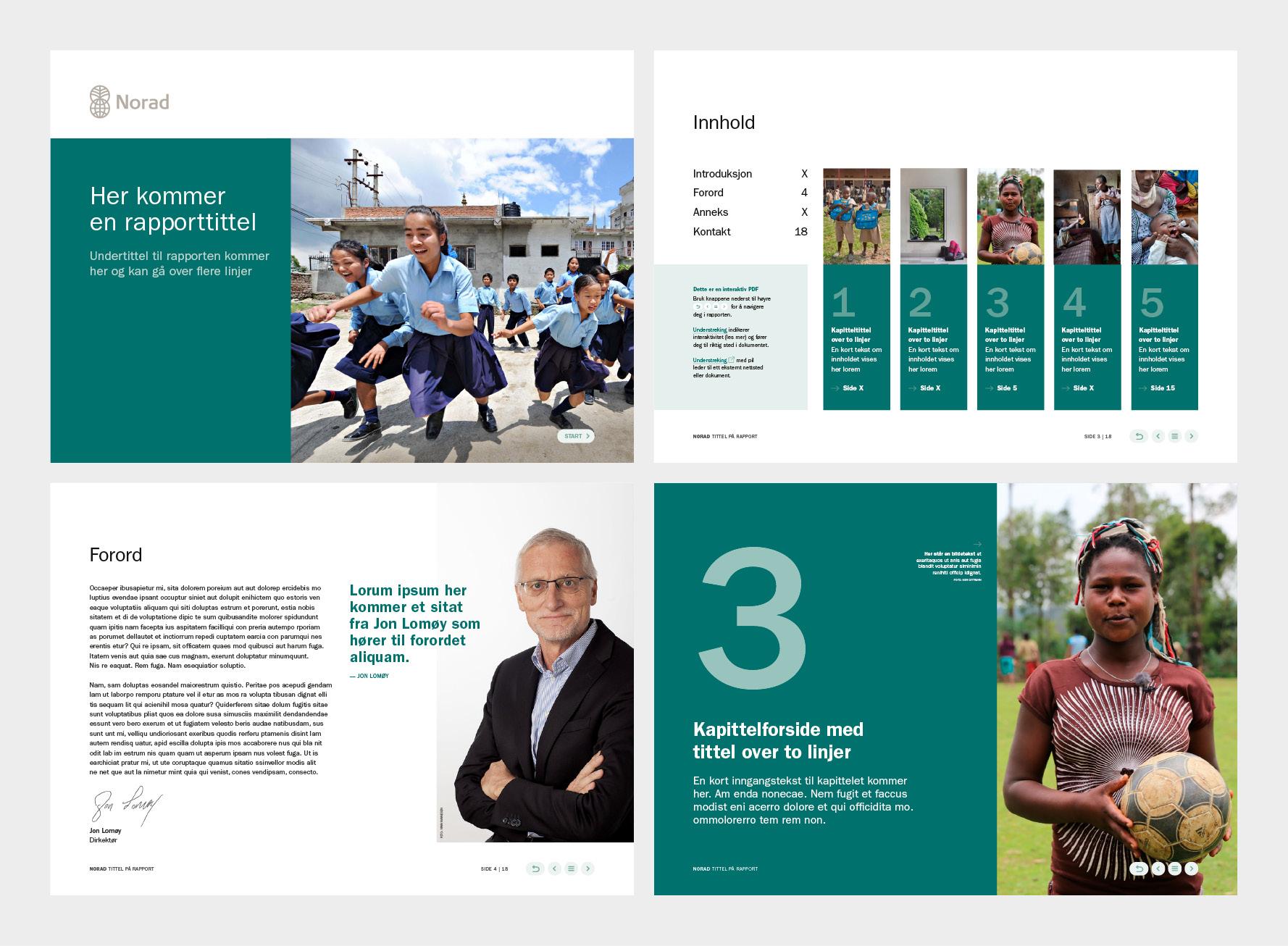 Norad rapport forside, innholdsfortegnelse forord og kapittelside